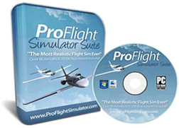 Pro Flight Simulator plane flight control